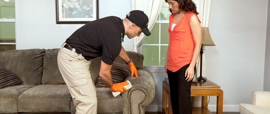 Menomonie, WI carpet upholstery cleaning